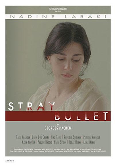 Stray Bullet