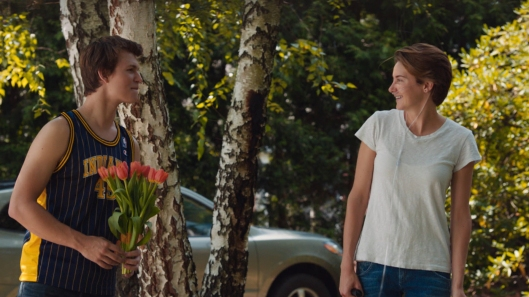Fault in Our Stars, The - scene