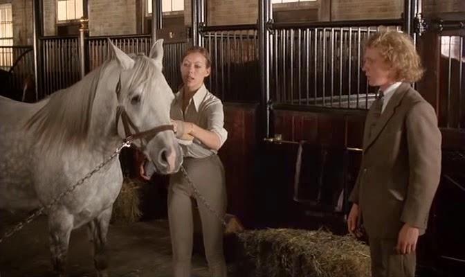 equus jill